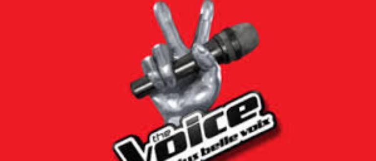 Article : L'Afrique francophone à l'épreuve de «The Voice»