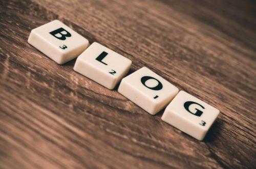 Article : Les blogueurs camerounais déroulent le tapis rouge à leurs lecteurs