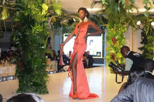 Article : Mon défilé de la Fashion Week à Douala au Cameroun