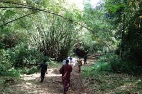 Article : Afrique : les colons et les esclavagistes doivent rendre gorge